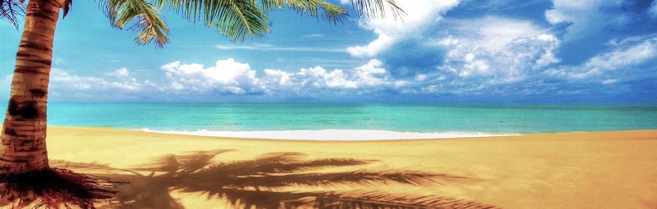 Plage et océan bleu